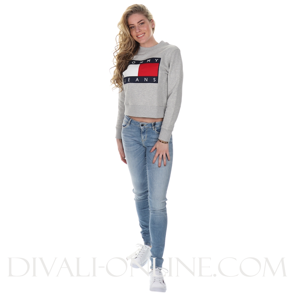 Sweater Flagt Grey Htr